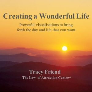 AUDIO: Creating a Wonderful Life (MP3/CD), Tracy Friend