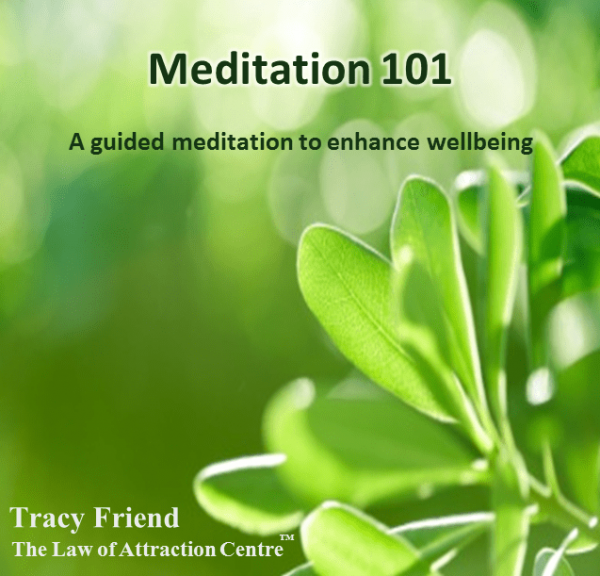 AUDIO: Meditation 101 (MP3/CD), Tracy Friend