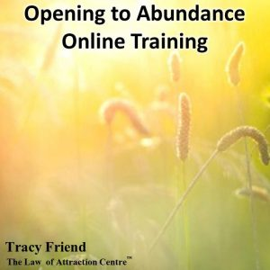 ONLINE TRAINING: Opening to Abundance, Tracy Friend