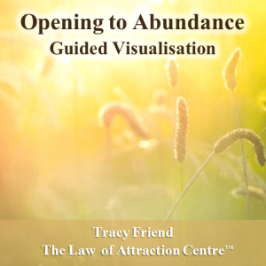 AUDIO: Opening to Abundance (MP3 Audio Recording), Tracy Friend